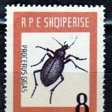 Sellos: ALBANIA . 1963..INSECTOS. ESCARABAJO CARABUS GIGAS. CAT. 8 €.** MNH ( 17-107 ). Lote 74474211