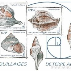 Sellos: TAAF 2019 - COQUILLAGES DE TERRE ADÉLIE SHEET MNH. Lote 147716129