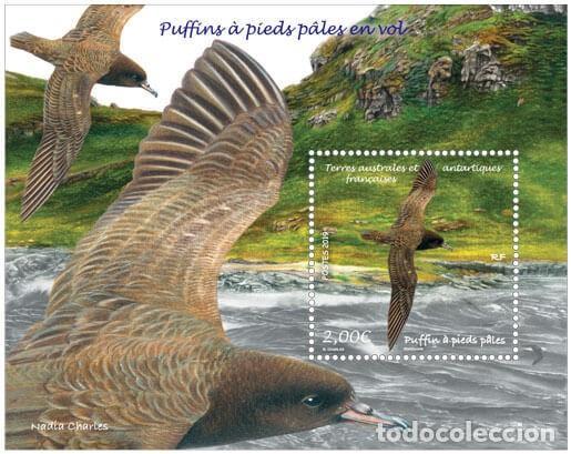 TAAF 2019 - PUFFINS À PIEDS PÂLES EN VOL SHEET MNH (Sellos - Extranjero - Oceanía - Otros paises)