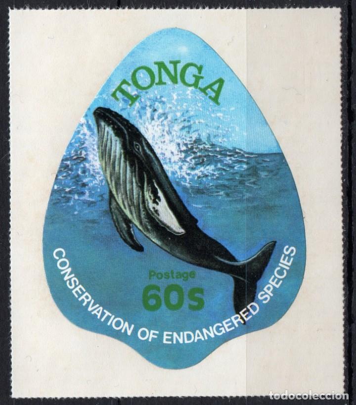 TONGA/1978/MNH/SC#448/ CONSERVACION DE LA NATURALEZA / BALLENAS / ANIMALES (Sellos - Extranjero - Oceanía - Otros paises)