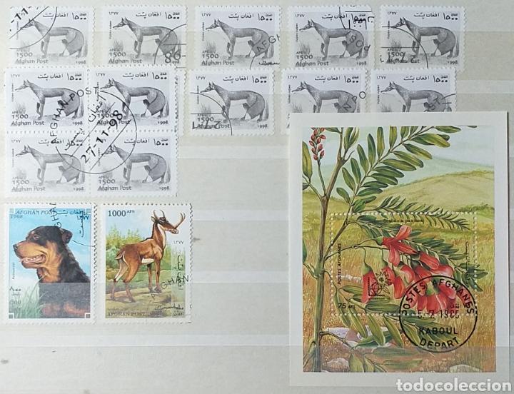 Sellos: Colección de sellos de Afganistán en álbum de 8 páginas - Foto 16 - 201160392