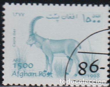 AFGANISTAN 1998 MICHEL 1834 SELLO * FAUNA WILDLIFE CABRA ALPINE IBEX (CAPRA IBEX) POSTES AFGHANES (Sellos - Extranjero - Asia - Afganistán)