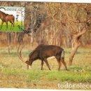 Sellos: ANGOLA & WWF ANTÍLOPE SABLE GIGANTE, HIPPOTRAGUS NIGER VARIANI, SABLE GIGANTE, MALANGE 1990 (6867). Lote 147650166