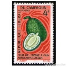 Francobolli: CAMERÚN 1967. MI 509,, YT 444. FRUTA DEL ÁRBOL DEL PAN. USADO. Lote 141221766