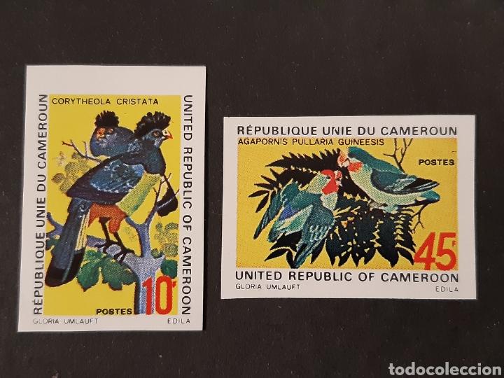 CAMERÚN, YVERT 534-35 (*) SIN DENTAR, FAUNA AVES (Sellos - Extranjero - África - Camerún)