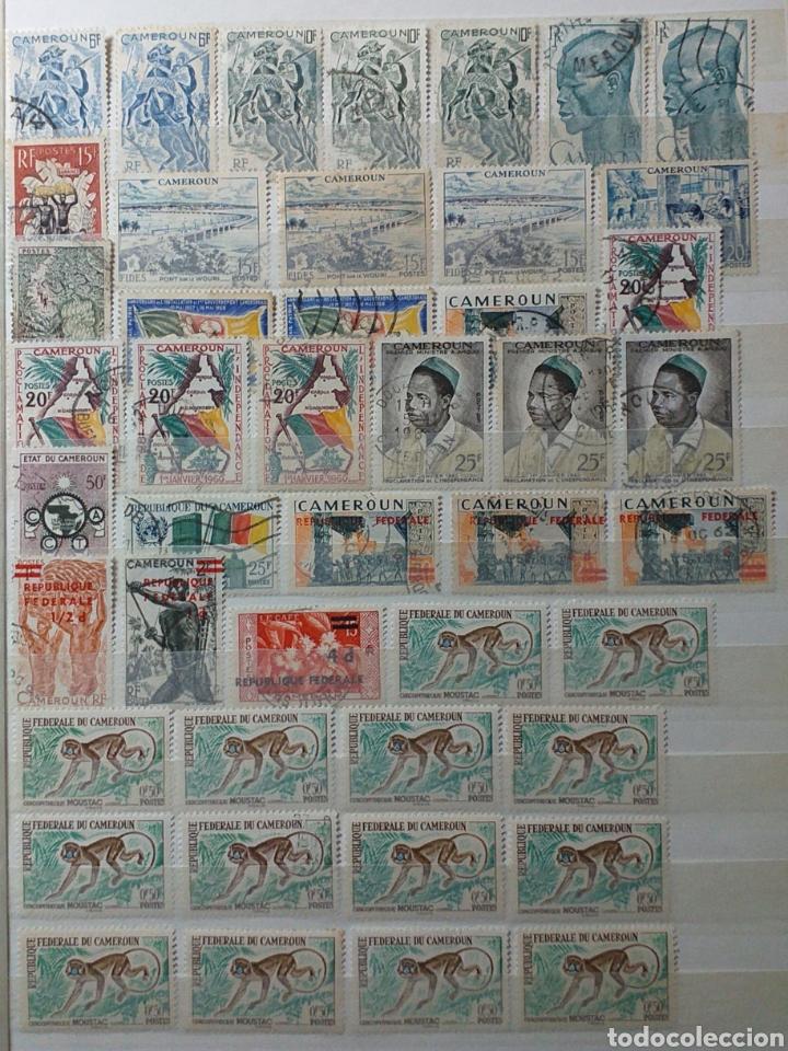 Sellos: Colección de sellos de Camerún en álbum de 8 páginas - Foto 5 - 203408411