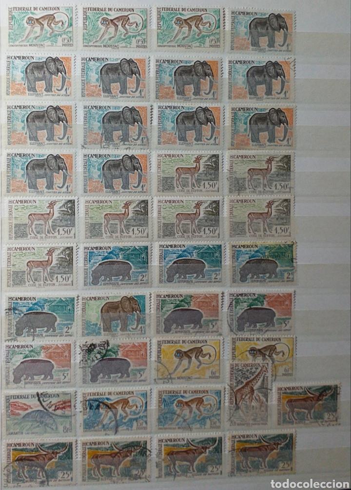Sellos: Colección de sellos de Camerún en álbum de 8 páginas - Foto 6 - 203408411
