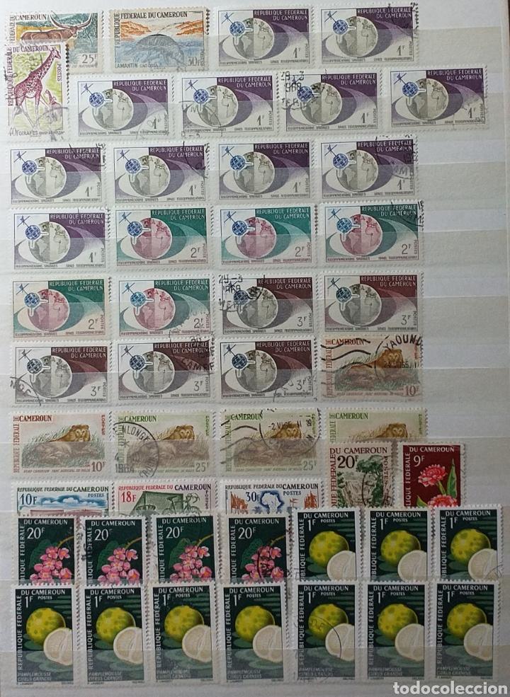 Sellos: Colección de sellos de Camerún en álbum de 8 páginas - Foto 7 - 203408411