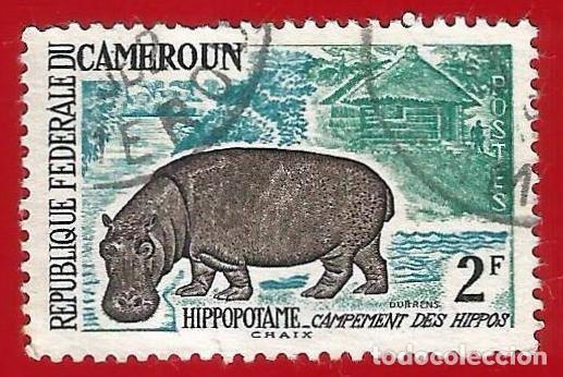 CAMERUN. 1962. FAUNA. HIPOPOTAMO (Sellos - Extranjero - África - Camerún)
