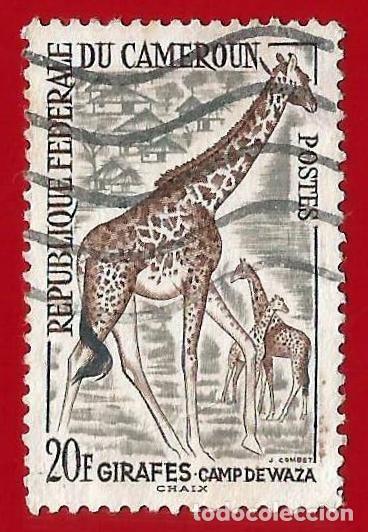 CAMERUN. 1962. FAUNA. JIRAFA (Sellos - Extranjero - África - Camerún)