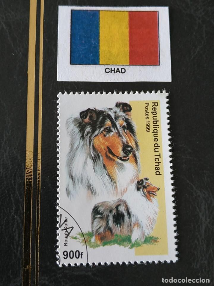 CHAD (C) - 1 SELLO CIRCULADO (Sellos - Extranjero - África - Chad)