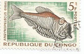 Sellos: LOTE DE 10 SELLOS USADOS REPUBLICA DEL CONGO 1961 Y 1966- DOS SERIES COMPLETAS Y EN MUY BUEN ESTADO - Foto 2 - 156712994