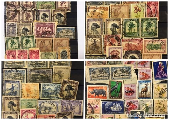 LOTE DE 114 SELLOS DEL CONGO BELGA. (Sellos - Extranjero - África - Congo)