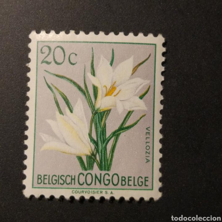 SELLO SIN MARCAR DEL CONGO BELGA DE 20C (Sellos - Extranjero - África - Congo)