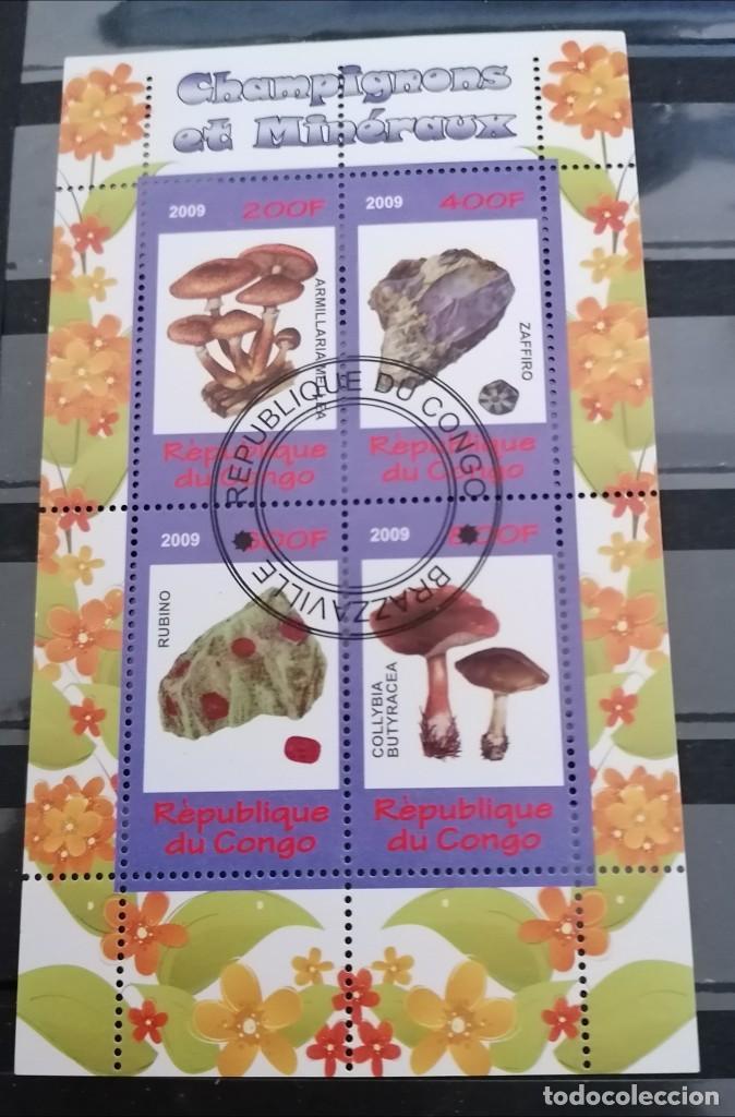CONGO .2009 H/B . SETAS Y MINERALES. .* .MH (21-69) (Sellos - Extranjero - África - Congo)