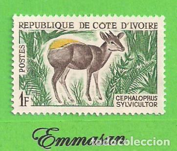 COSTA DE MARFIL - MICHEL 259 - YVERT 211 - FAUNA - ANTÍLOPE. (1964).** NUEVO SIN FIJASELLOS. (Sellos - Extranjero - África - Costa de Marfil)