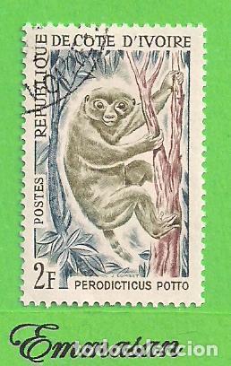 COSTA DE MARFIL - MICHEL 260 - YVERT 212 - FAUNA - SIMIO - POTTO. (1964). NUEVO MATASELLADO. (Sellos - Extranjero - África - Costa de Marfil)