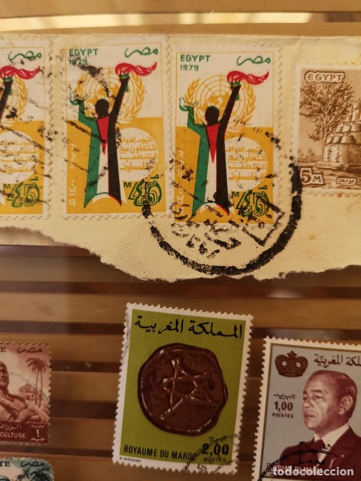 Sellos: LOTE DE SELLOS ANTIGUOS PERTENECIENTE A EGIPTO Y ALGUNOS SELLOS ÁRABES - Foto 2 - 158663530