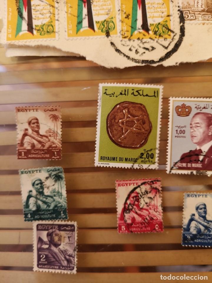 Sellos: LOTE DE SELLOS ANTIGUOS PERTENECIENTE A EGIPTO Y ALGUNOS SELLOS ÁRABES - Foto 3 - 158663530