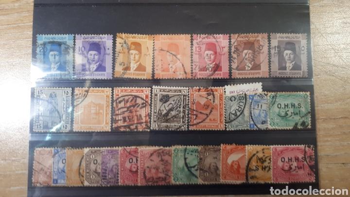 SELLOS USADOS DE EGIPTO Y230 (Sellos - Extranjero - África - Egipto)