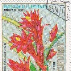 Sellos: GUINEA ECUATORIAL PROTECCIÓN DE LA NATURALEZA . Lote 43269834