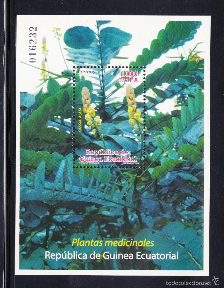 GUINEA ECUATORIAL 421 HB** - AÑO 2009 - FLORA - PLANTAS MEDICINALES (Sellos - Extranjero - África - Guinea Ecuatorial)