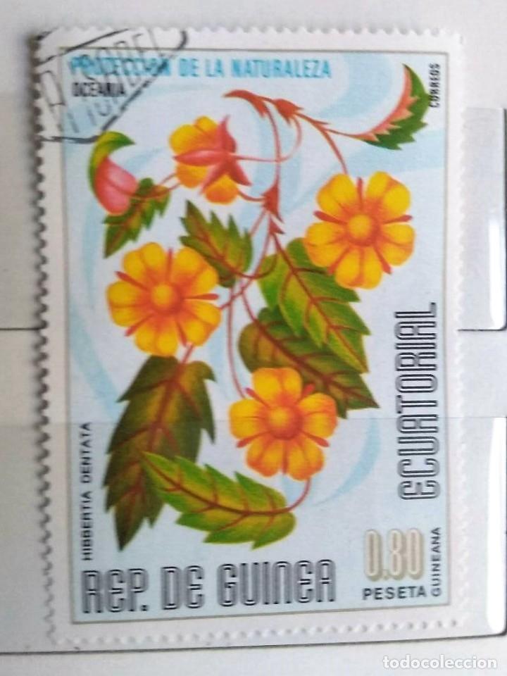 GUINEA ECUATORIAL, SELLO USADO (Sellos - Extranjero - África - Guinea Ecuatorial)