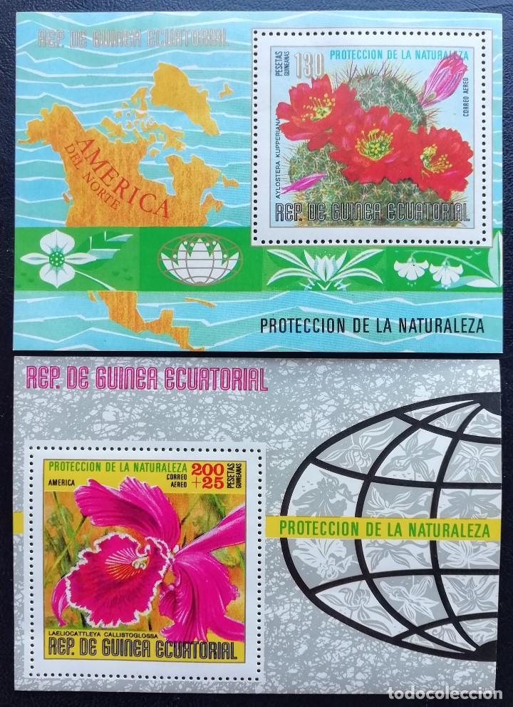 1974. GUINEA ECUATORIAL. HB (DOS). PROTECCIÓN DE LA NATURALEZA. FLORES DE SUDAMÉRICA. NUEVO. (Sellos - Extranjero - África - Guinea Ecuatorial)