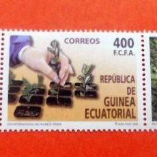 Sellos: GUINEA ECUATORIAL - 2008 - EDIFIL 408/10 /**/ - AÑO INTERNACIONAL DEL PLANETA TIERRA. Lote 227864950