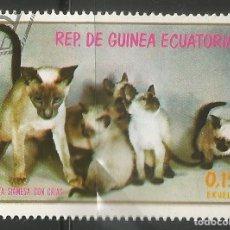 Sellos: REP. DE GUINEA ECUATORIAL - GATAS SIAMESA CON CRIAS - USDADO - COMBINA ARTÍCULOS. Lote 228351470