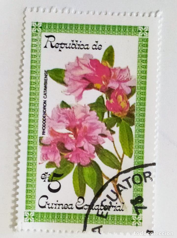 SELLO DE GUINEA ECUATORIAL 5 E - 1979 - RODODENDRO - USADO SIN SEÑAL DE FIJASELLOS (Sellos - Extranjero - África - Guinea Ecuatorial)