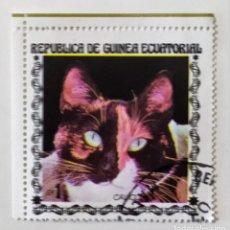 Sellos: SELLO DE GUINEA ECUATORIAL 1 E - 1978 - GATOS - USADO SIN SEÑAL DE FIJASELLOS. Lote 242053085