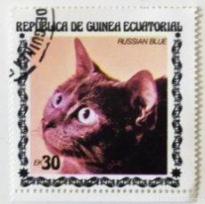 Sellos: SELLO DE GUINEA ECUATORIAL 30 E - 1978 - GATOS - USADO SIN SEÑAL DE FIJASELLOS. Lote 242053470