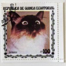 Sellos: SELLO DE GUINEA ECUATORIAL 100 E - 1978 - GATOS - USADO SIN SEÑAL DE FIJASELLOS. Lote 242053560