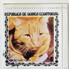 Sellos: SELLO DE GUINEA ECUATORIAL 8 E - 1978 - GATOS - USADO SIN SEÑAL DE FIJASELLOS. Lote 242053690