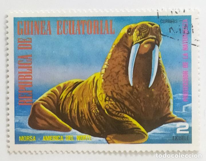SELLO DE GUINEA ECUATORIAL 2 E - 1977 - ANIMALES NORTEAMERICA - USADO SIN SEÑAL DE FIJASELLOS (Sellos - Extranjero - África - Guinea Ecuatorial)