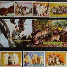 Sellos: GUINEA ECUATORIAL 1976 - LOS GATOS - MICHEL 1016/1022 + BL252/BL253 YVERT 98 + PA82 NUEVOS MNH. Lote 268775184