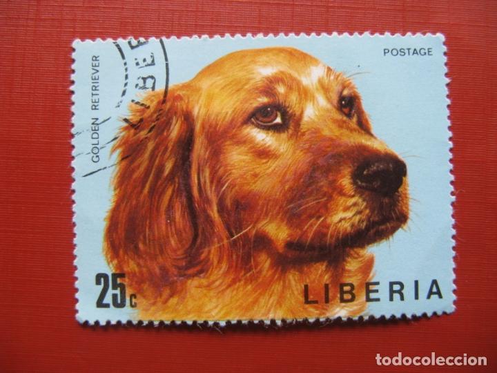 LIBERIA 1974, PERROS, YVERT 643 (Sellos - Extranjero - África - Liberia)