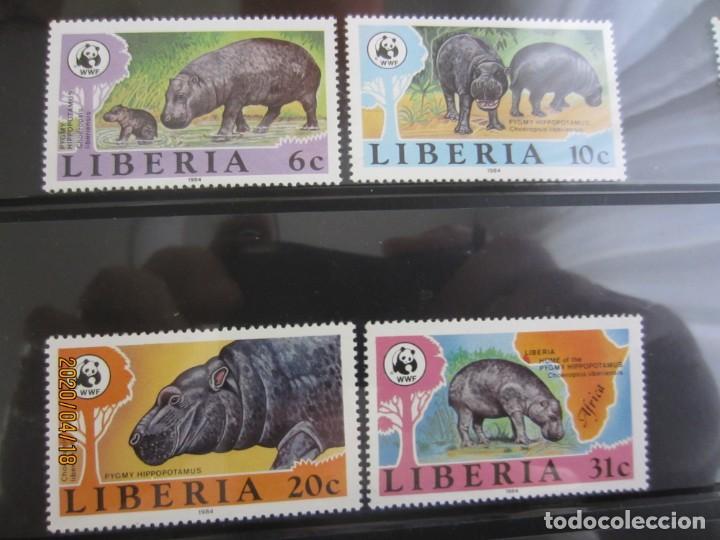 LIBERIA 1984 4 V. WWF NUEVO (Sellos - Extranjero - África - Liberia)