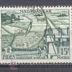 Sellos: MADAGASCAR-1956- YVERT TELLIER 330. Lote 22107066