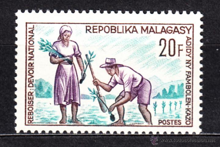 MADAGASCAR 419** - AÑO 1966 - REFORESTACION (Sellos - Extranjero - África - Madagascar)