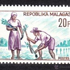 Sellos: MADAGASCAR 419** - AÑO 1966 - REFORESTACION. Lote 49569134