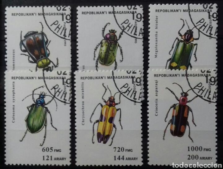 SELLOS DE MADAGASCAR INSECTOS 1994 (Sellos - Extranjero - África - Madagascar)