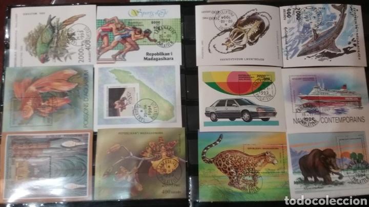 HB (12) R. MADAGASCAR MTDAS/1993-1994/FAUNA/FLORA/TIBURON/MAMUT/TIGRE/BARCO/ATLETISMO/PESCADOS/AVES/ (Sellos - Extranjero - África - Madagascar)