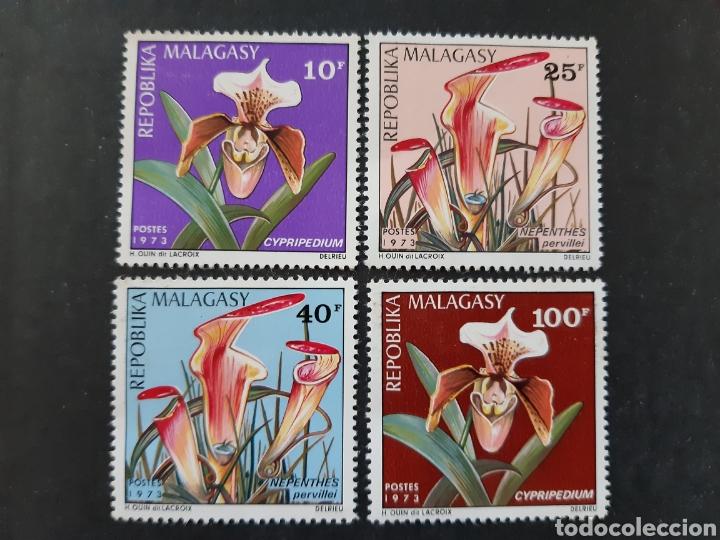 MADAGASCAR, YVERT 531-34** FLORA (Sellos - Extranjero - África - Madagascar)
