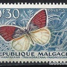 Sellos: MADAGASCAR 1960 - FAUNA, MARIPOSAS, COLOTIS ZOE - SIN GOMA. Lote 215749201