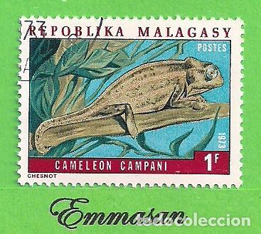 MADAGASCAR - MICHEL 683 - YVERT 523 - CAMALEONES - MALGACHE DE LOS BOSQUES. (1973). NUEVO MATASELLAD (Sellos - Extranjero - África - Madagascar)