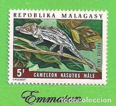 MADAGASCAR - MICHEL 684 - YVERT 524 - CAMALEONES - NARIGUDO. (1973).** NUEVO SIN FIJASELLOS. (Sellos - Extranjero - África - Madagascar)