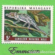 Sellos: MADAGASCAR - MICHEL 684 - YVERT 524 - CAMALEONES - NARIGUDO. (1973).** NUEVO SIN FIJASELLOS.. Lote 218832871