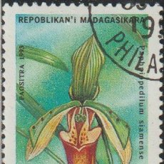 Sellos: MADAGASCAR 1993 SCOTT 1272 SELLO * FLORA ORQUIDEAS PAPHIOPÉDILUM SIAMENSE MICHEL 1570 YVERT 1323A. Lote 235909560